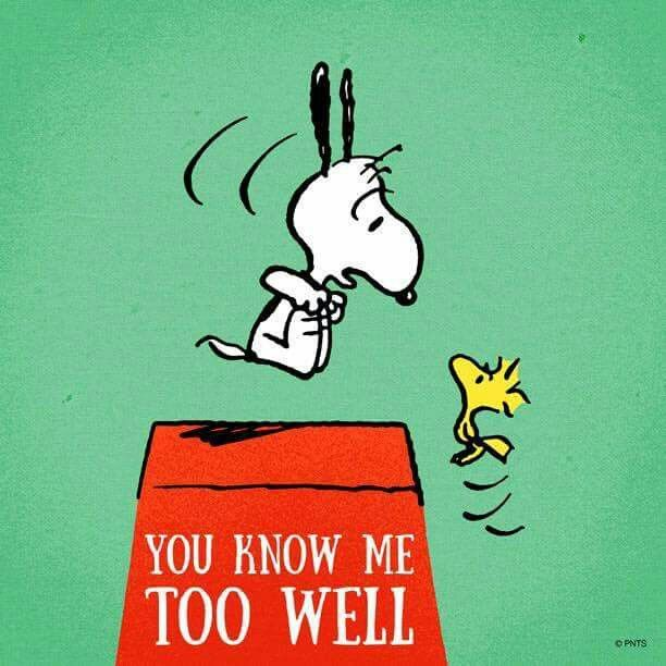 """""""You know me too well"""", Snoopy and Woodstock."""
