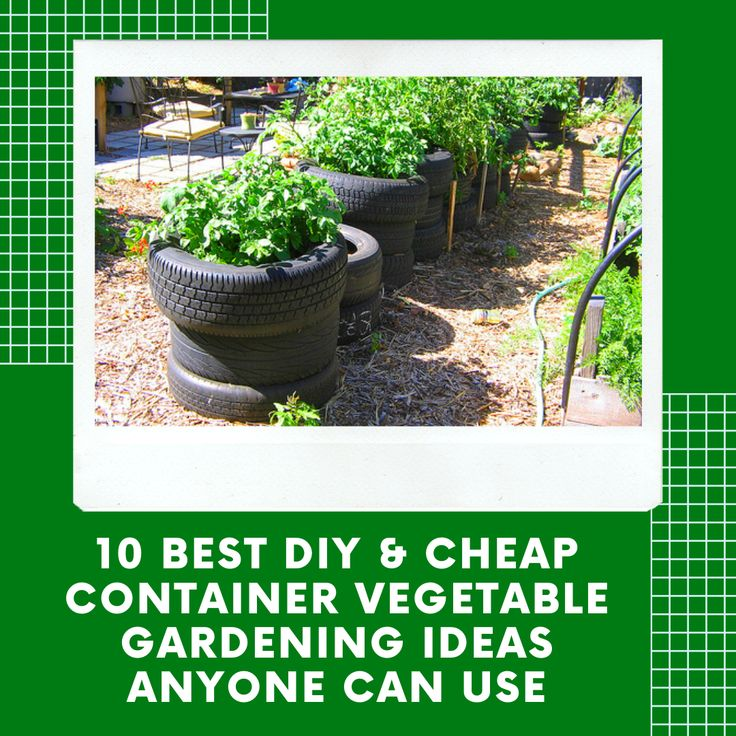 10 Best DIY & Cheap Container Vegetable Gardening Ideas