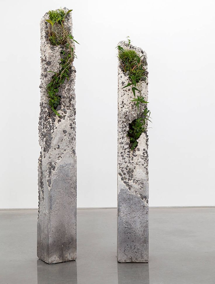 Sculptural Installations made of Concrete and Plants – Fubiz Media