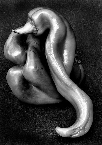 Edward Weston - Again, objects brought out of their usual context to impersonate other representations. Enhanced by the deep black and white tones, and unusual shapes