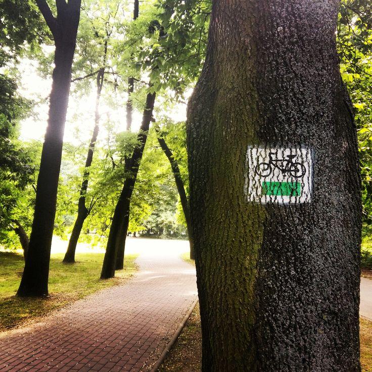 Atrakcje przy naszej inwestycji znajdą także zapaleni sportowcy. W okolicy mieści się między innymi bardzo rozbudowana sieć ścieżek rowerowych :) #rower #bicycle #ścieżki #park #zieleń #sport #aktywność #atrakcje #czaswolny