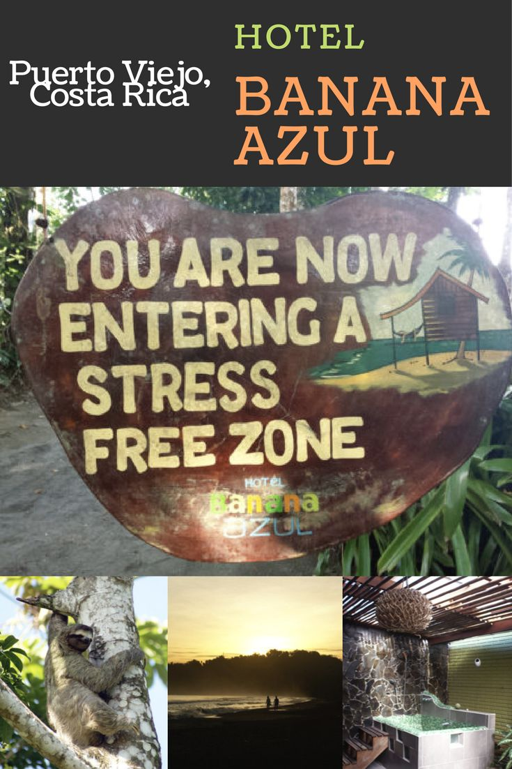 A review of affordable luxury at Banana Azul in Puerto Viejo, Costa Rica!
