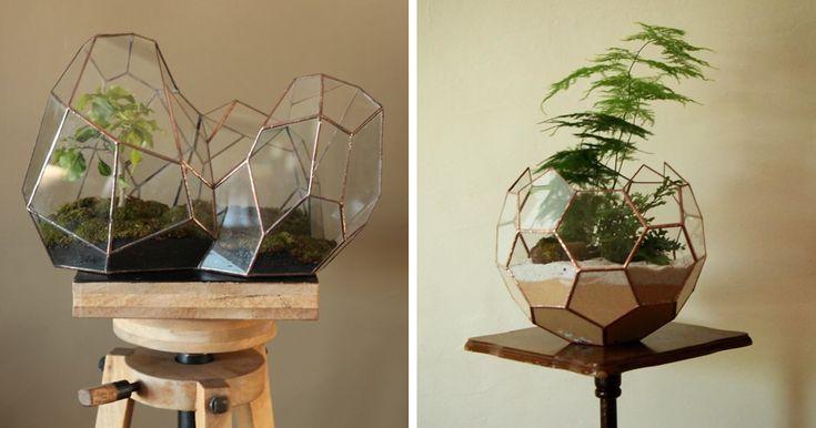 I Reimagined The Terrarium | Bored Panda