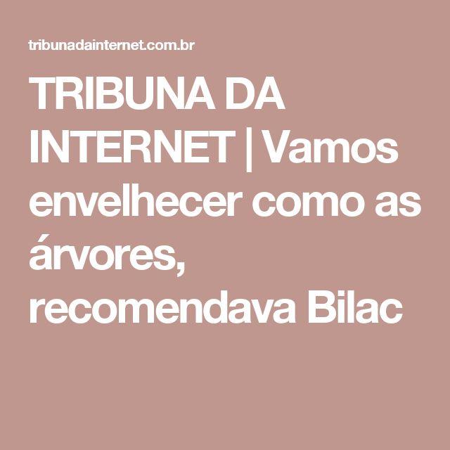 TRIBUNA DA INTERNET | Vamos envelhecer como as árvores, recomendava Bilac