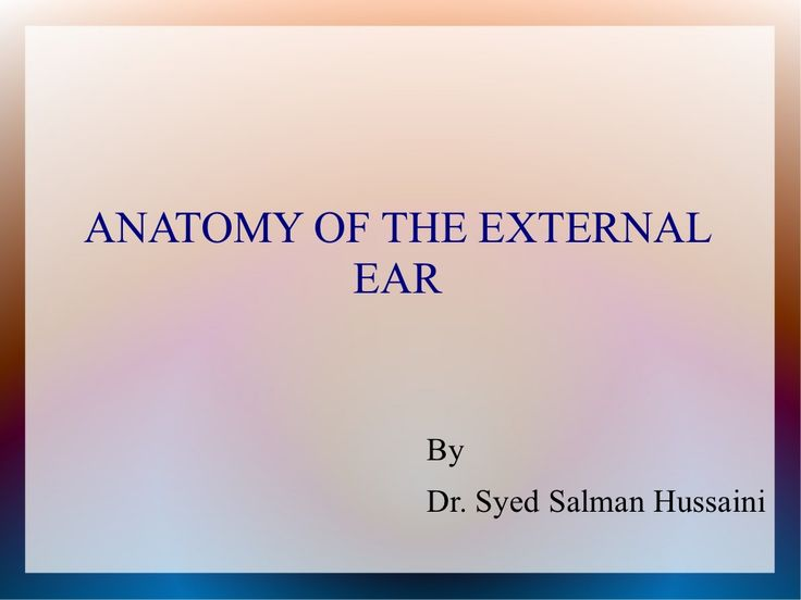 Anatomy of the external and middle ear by Salman Javeed via slideshare