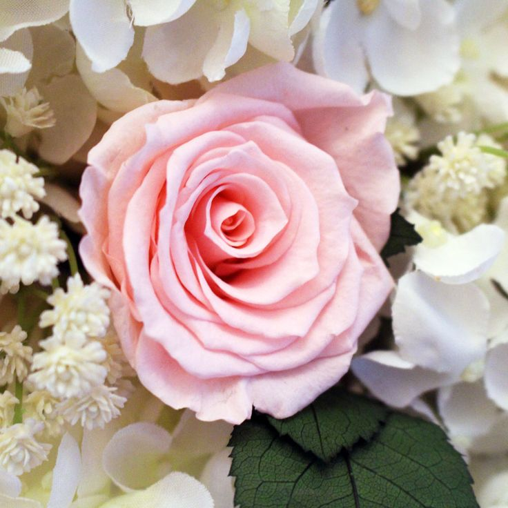 Coral And Pink Wedding Flowers: 257 Best Images About Peach, Pink, And Coral Wedding