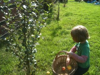 Growing fruit is a great way to get kids into gardening