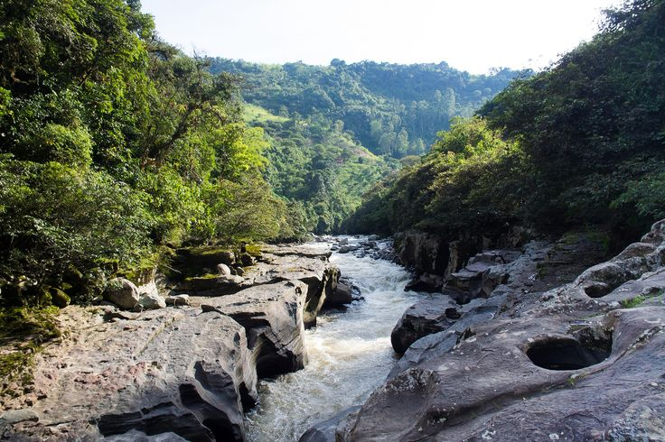 https://flic.kr/p/sw7DXc | Magdalena River Valley, Colombia | The Magdalena River (Spanish: Río Magdalena)  is the principal river of Colombia, flowing northward about 1,528 kilometres (949 mi) through the western half of the country. It takes its name from the biblical figure Mary Magdalene. It is navigable through much of its lower reaches, in spite of the shifting sand bars at the mouth of its delta, as far as Honda, at the downstream base of its rapids. It flows through the Magdalena…