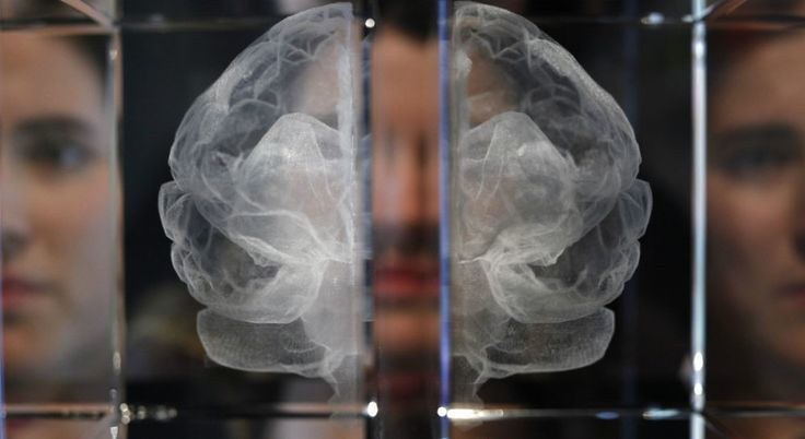 Psychopaths: Cold Blood Or Broken Circuit? Inmate Brain Scans Find New Flaws