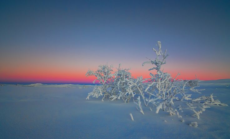 -37 C by Anders Hanssen on 500px