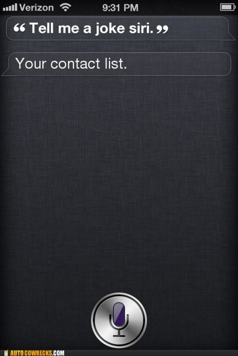 I think Siri and I could be good friends...