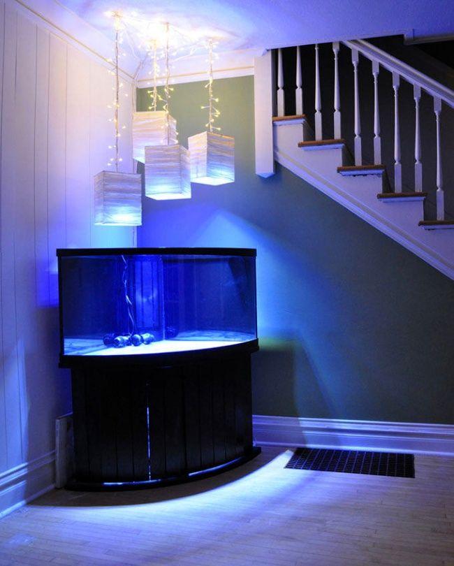 Die besten 25+ Aquarium led beleuchtung Ideen auf Pinterest - schlafzimmer beleuchtung led