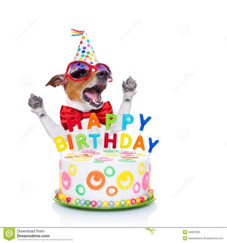 funny happy birthday dog cake-#29