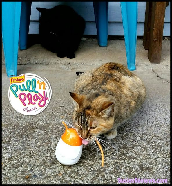 Susie's Reviews and Giveaways: #ad @petsmartcorp Friskies® Pull 'n Play Pack Makes Treat Time Fun! ...