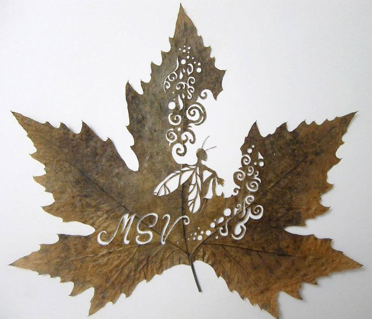 Precision Cut Leaf Artworks by Lorenzo Duran Gloucestershire Resource Centre http://www.grcltd.org/scrapstore/