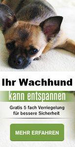 Blog / News | Traumtüren nach Maß | 1001-Tuer.de :: Traumtüren nach Maß