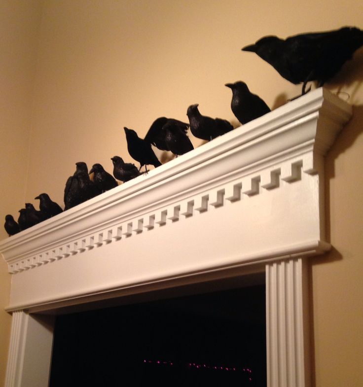 Because every house needs a murder of crows