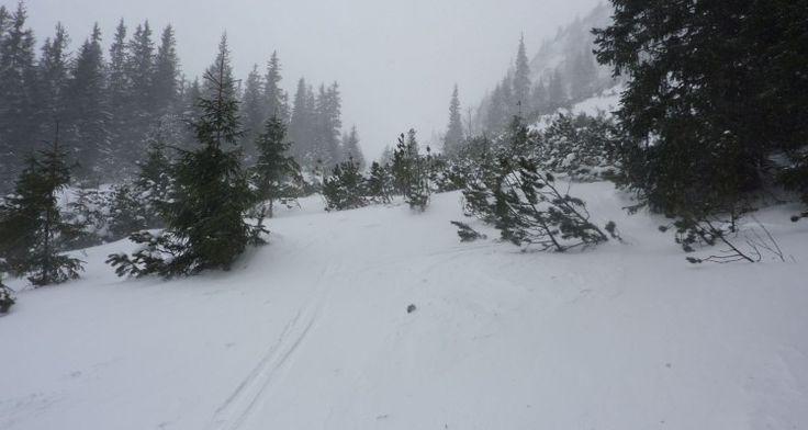 Pierwsze kroki ze ski-touringiem