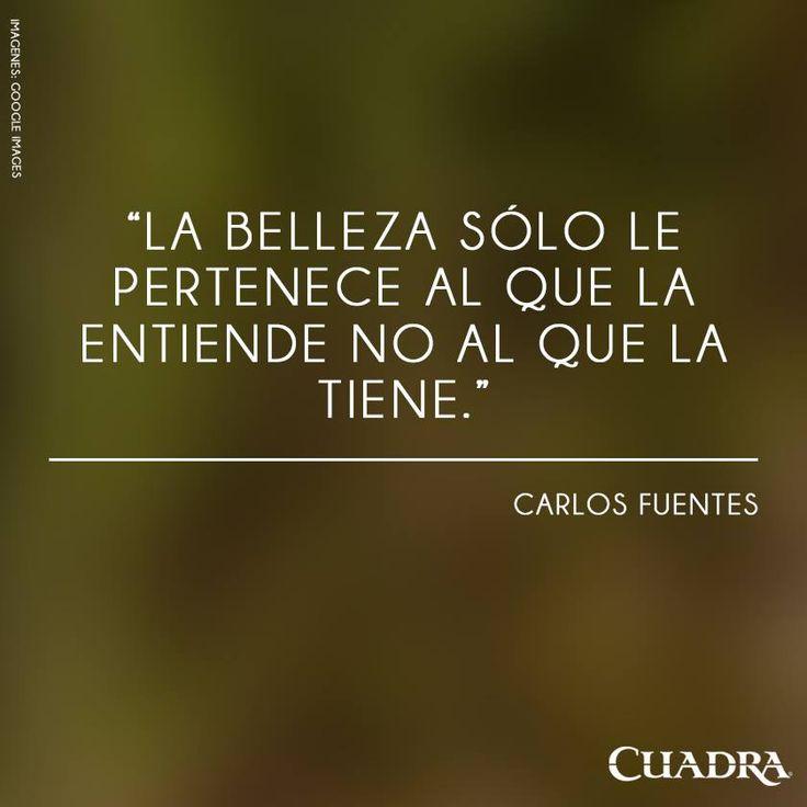 La belleza sólo le pertenece al que la entiende no al que la tiene #Carlos #Fuentes