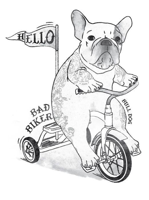 French bulldog graphic design made by Danilo De Donno -  www.danilodedonno.com - danilo.de.donno@alice.it