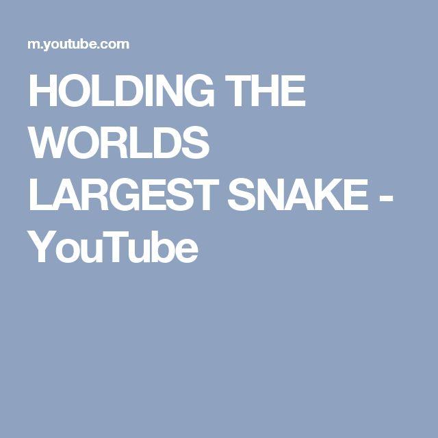 HOLDING THE WORLDS LARGEST SNAKE - YouTube