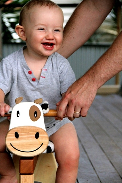 A gift from Grandma and Pop, Henry Robertson loves Calfie Paddie Rider - he shrieks with delight when he hops on for a ride; and his little face lights up with glee.  http://www.entropy.com.au/manufacturers/Im-Toy/im-toy-ride-on-cow-calfie-paddie-rider-7027.php