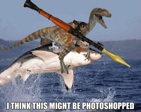 .Jurassic Parks, Real Life, Laugh, Sharks Weeks, Funny Pictures, The Ocean, Funny Stuff, So Funny, Photoshop