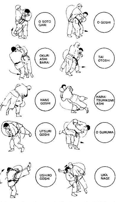 senseth - Judo waza ( techniques)