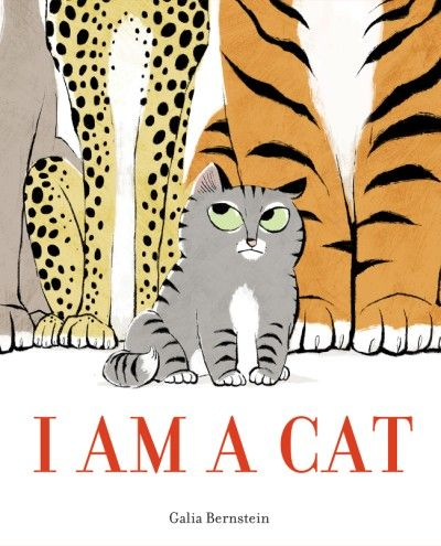 We know cats come in all shapes and sizes from almost all corners of the world.  I Am A Cat (Abrams Books for Young Readers, February 6, 2018) written and illustrated by Galia Bernstein, her debut title as both author and illustrator, presents us with a discussion.  This discourse begins with several simple declarations.