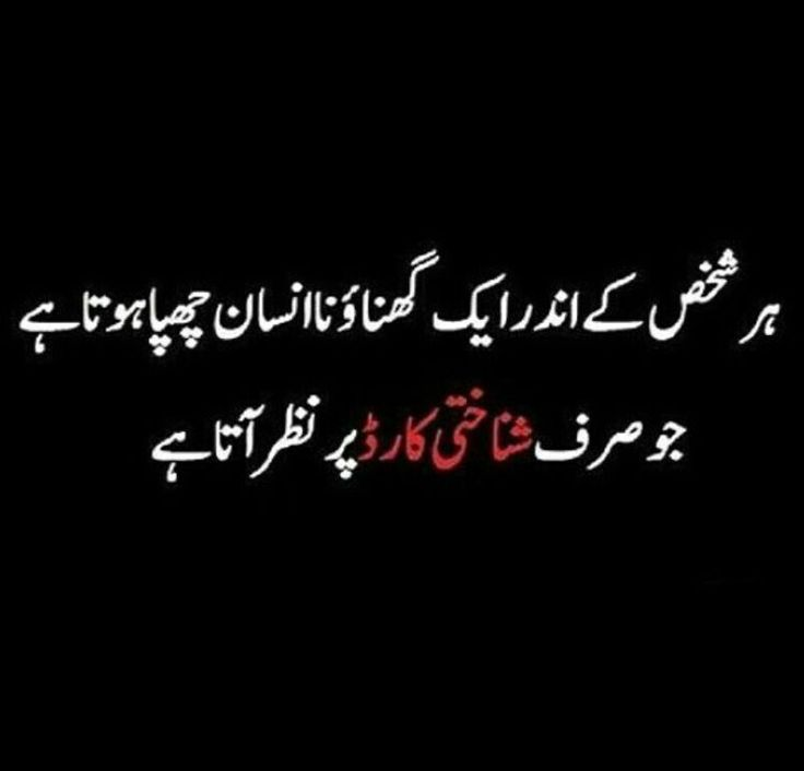 Funny Poetry Quotes In Urdu: 283 Best Funny Images On Pinterest