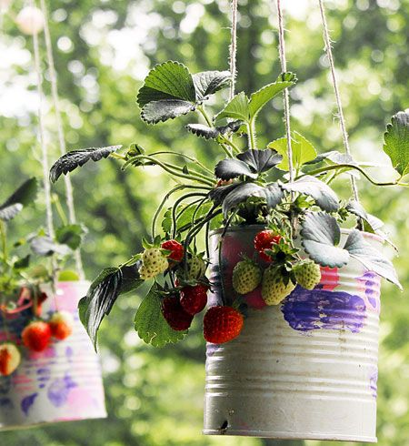 click pic for 29 spring container gardening ideas make your own strawberry planters diy