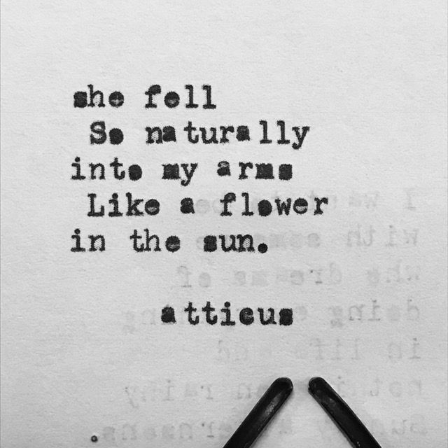 'Flower In The Sun' #atticuspoetry #atticus #poetry #poem #words #quote #flower #sun #she #loveherwild @laurenholub