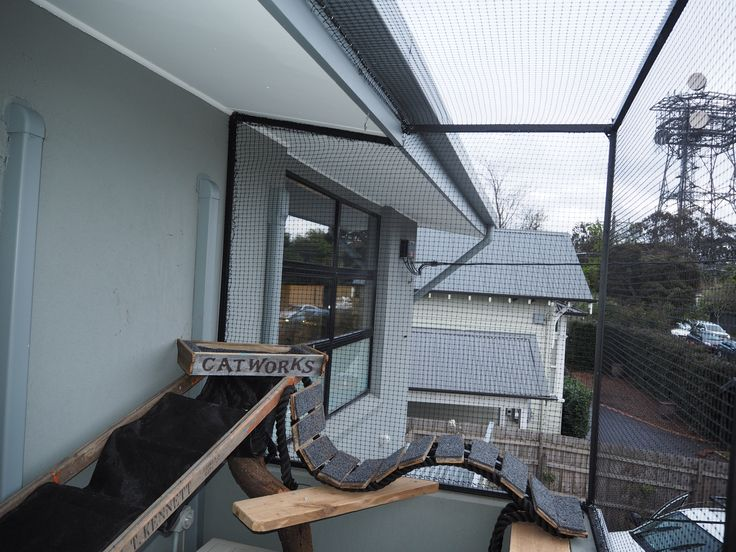 Up on the balcony, this enclosure has fancy cat climbing and cat bed ready for sick cats and pets.