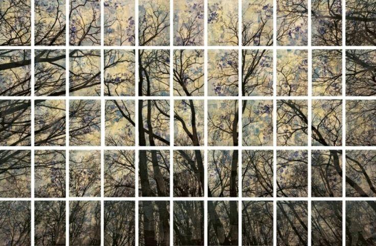 Trees, 2013, mixed media on canvas, cm 183x297