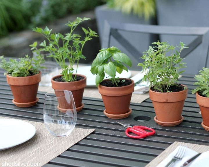 Mini pots of herbs are a centerpiece, garnish and party favor too!  I love this idea!❤️