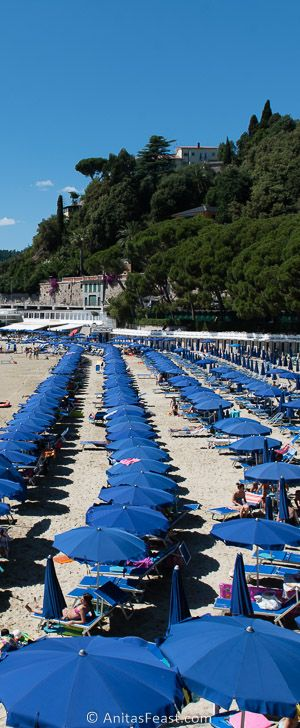 The beach at Lerici, its umbrellas sprawling in a mostly orderly way on a brilliant summer's day.
