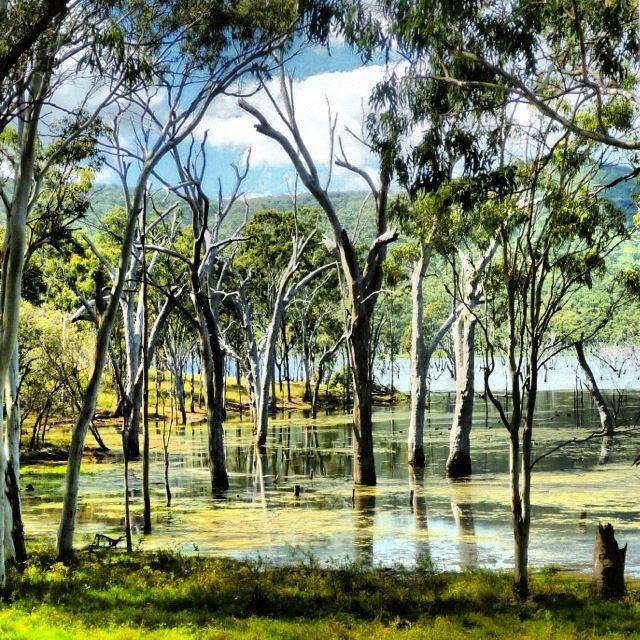 Eungella Dam, Mackay