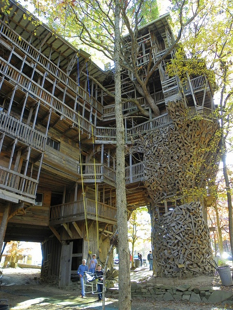 World 39 s largest treehouse places pinterest - Biggest treehouse in the world ...