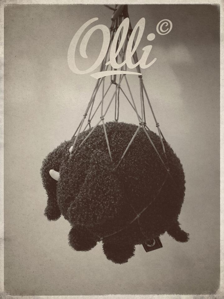Ollie :)