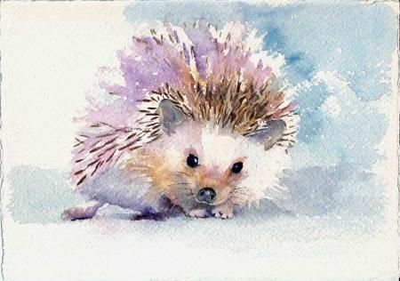 hedgehog, Paintings, Sue Smith, SAA Professional Members' Galleries
