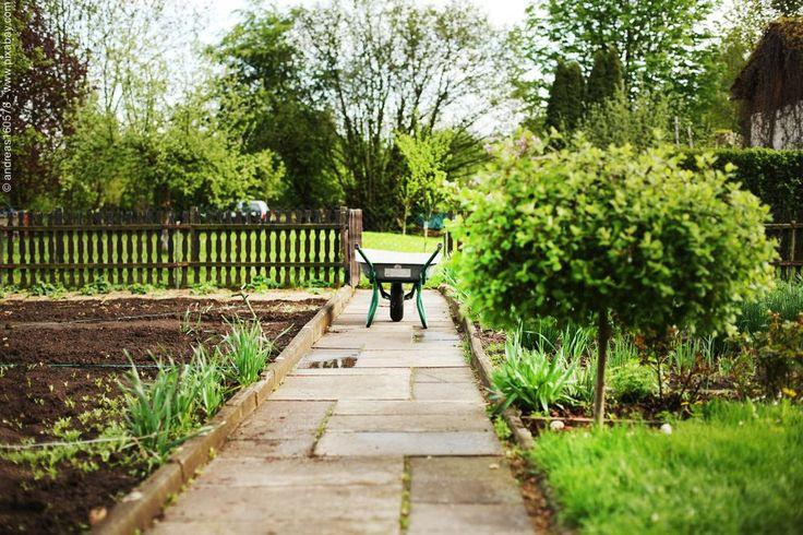 Heute beginnt die National Allotments Week in Großbritannien – die Woche der Kleingärten. Mehr dazu in unserem Blog.