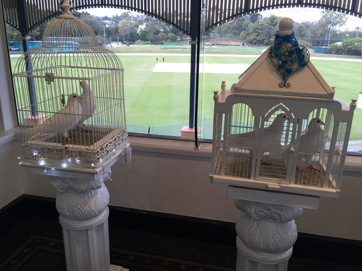 White doves are a lovely inclusion in your wedding ceremony