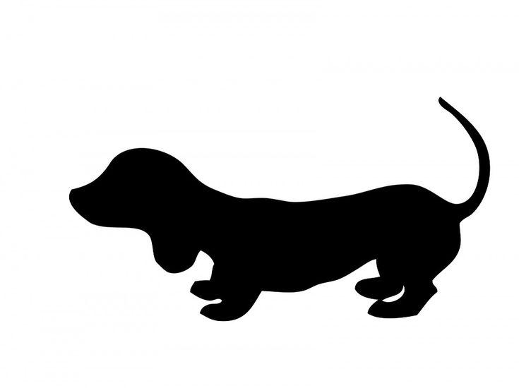 Hund, Gravhund, Hvalp, Sød, Dyr, Kæledyr, Hunde, Sort