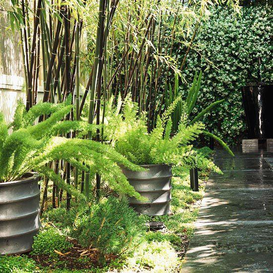 72 best spill pots images on pinterest garden ideas. Black Bedroom Furniture Sets. Home Design Ideas