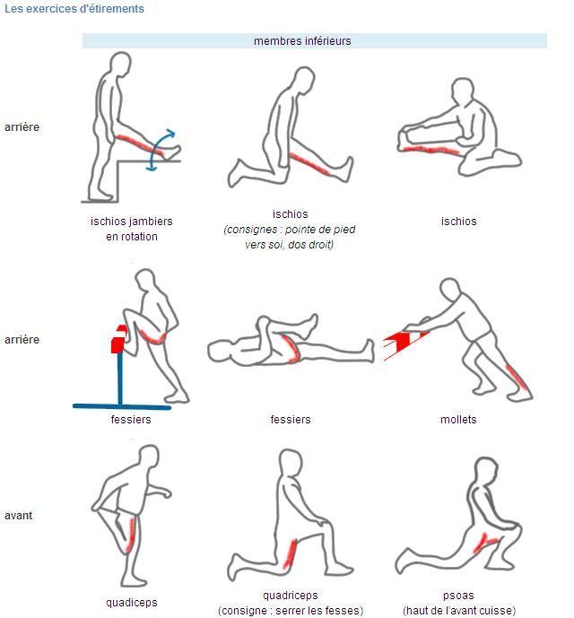 exercices etirements membres inferieurs utiles 2 Programme détirements musculaires des membres inférieurs   Course à pied