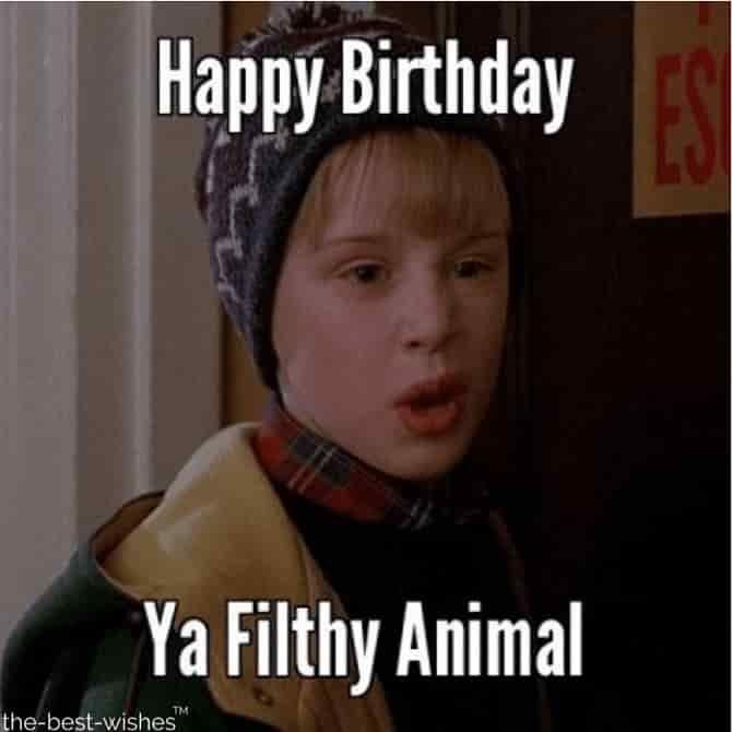 Top 100 Funniest Happy Birthday Memes Most Popular Funny Happy Birthday Meme Christmas Memes Funny Happy Birthday Meme
