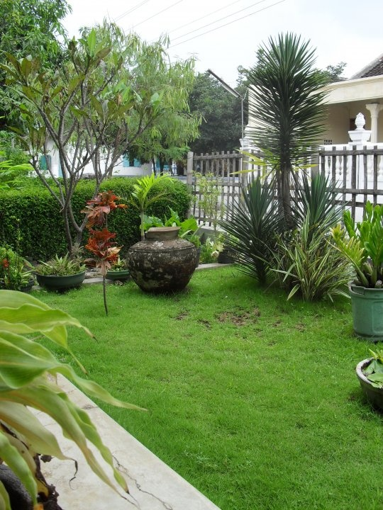 Front Garden of my home