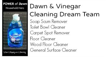 vinegar and dawn cleaner