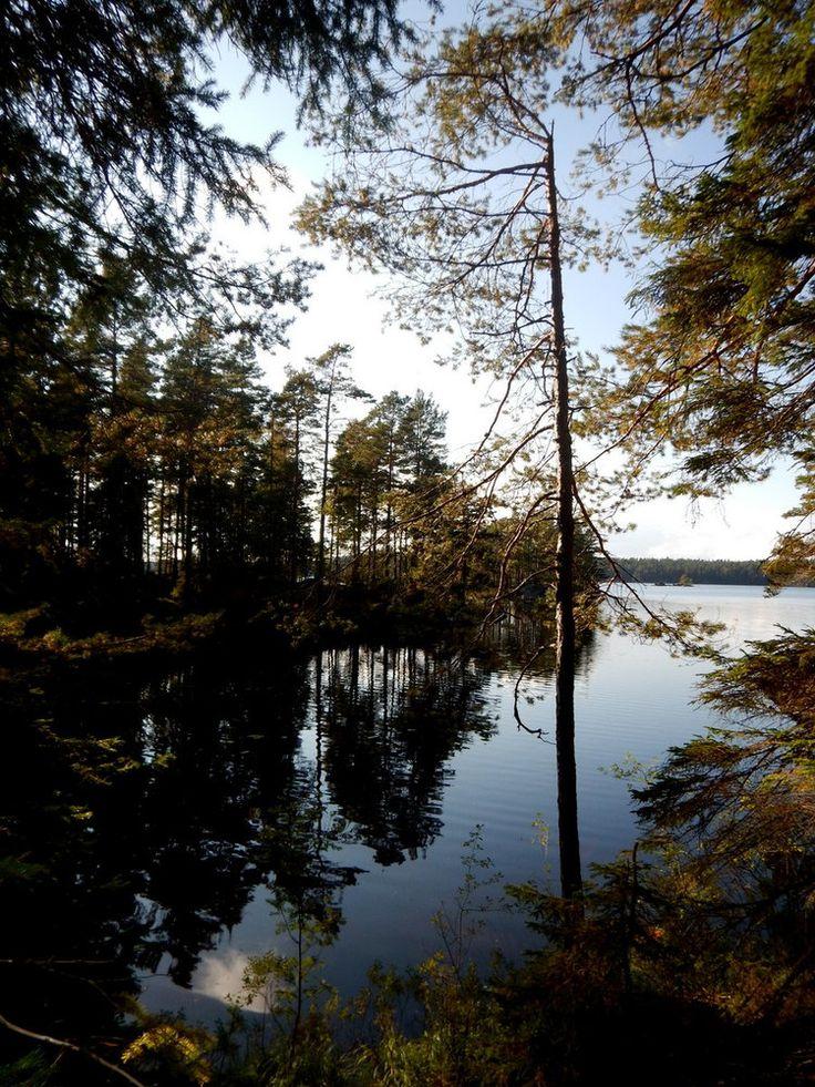 Tiveden Nationalpark, Schweden