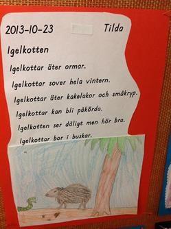 """ASL i Piteå - """"Vi skriver oss till läsning med digitala verktyg"""""""
